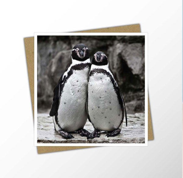 Cute penguin couple card