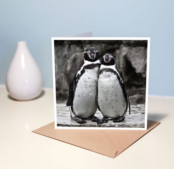 Penguin note card
